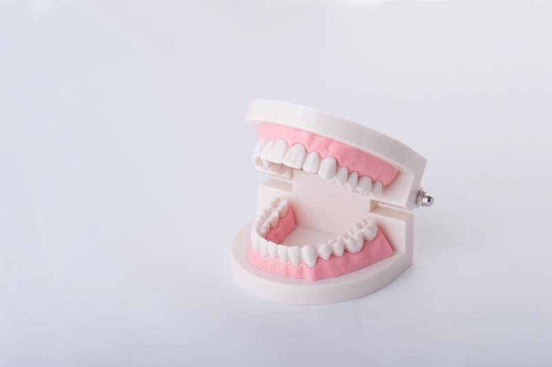 ひとりひとりに合わせた入れ歯